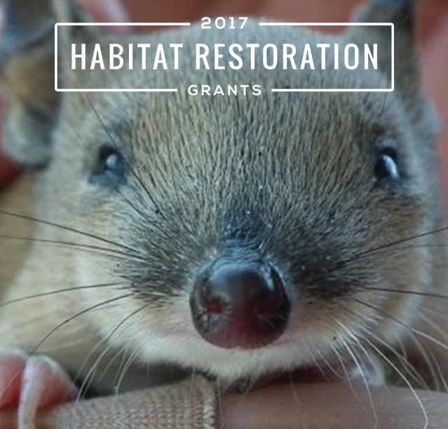 Close to $100,000 in funding awarded to projects helping save our Aussie species