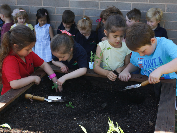 Ballarat kindie students find their green fingers!