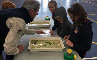 Newbery Park Primary School gets up close and personal with super-tiny critters