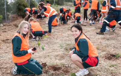 Landcare groups and students help to rehabilitate degraded railway corridor