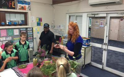 Students revive small belt of disused bushland