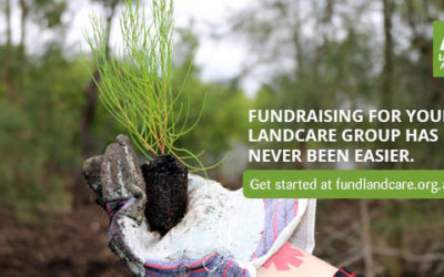 Fund Landcare: a new way for Coastcare groups to fundraise