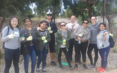 Employee volunteers give Landcare groups many helping hands