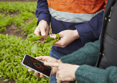 Digital mobile agriculture and the future of food security