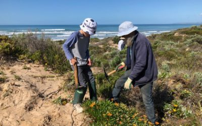 Projects across the country protect and improve the health of local marine and coastal environments