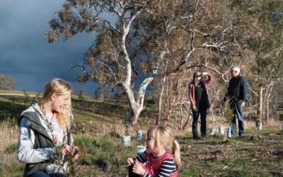 Special edition of Landcare in Focus