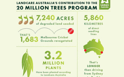20 Million Trees Infographic