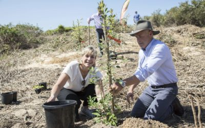 Zali Steggall MP regenerates the dunes for Landcare Week