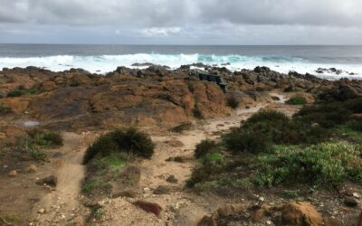 Restoration and protection project in the iconic Margaret River region
