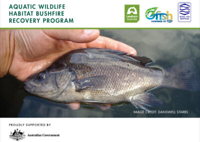 Aquatic Wildlife Habitat Bushfire Program