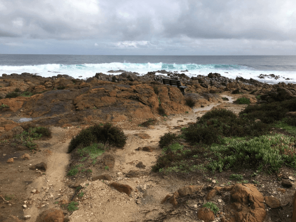 View of Yallingup Beach before Coastcare conservation