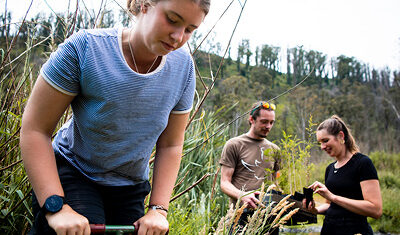 Nominate a Landcare Champion for a 2021 State and Territory Landcare Award